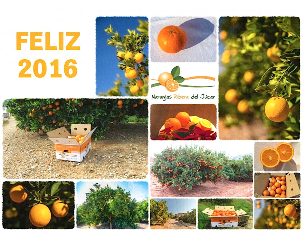 felicitacion-año-nuevo-naranjas-ribera-del-jucar-2016